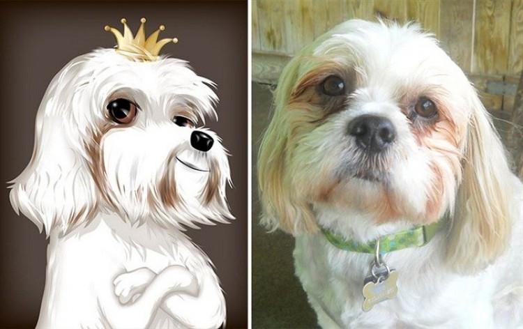 Piesek- księżniczka.