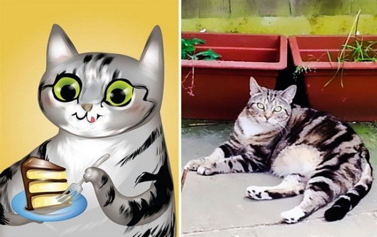 Kot obżartuch.