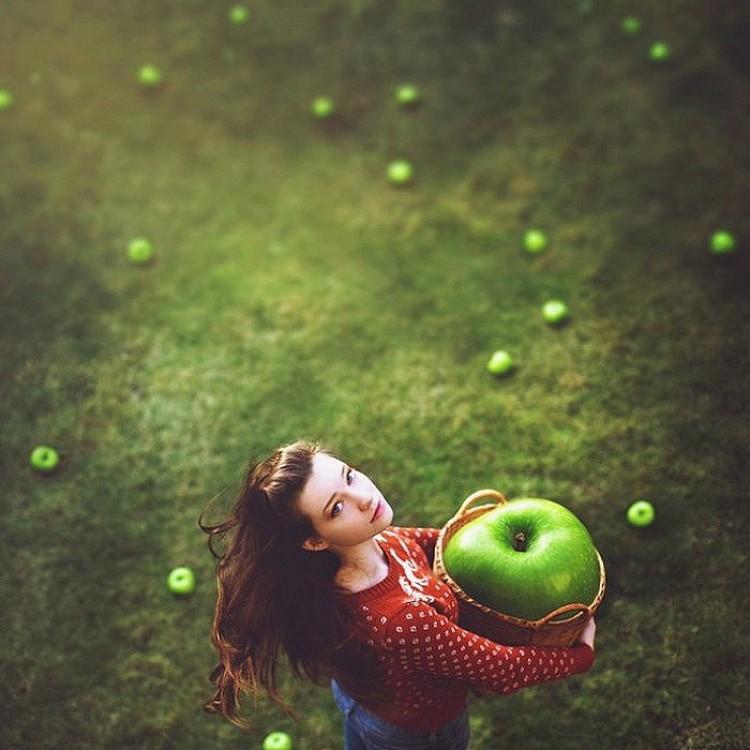 Jabłka. Audrey Simper.