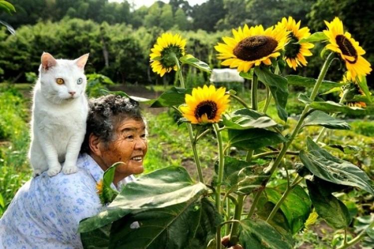 Kiedyś drogę 80 latce przeszła kotka. Od tamtego czasu są nierozłączne.