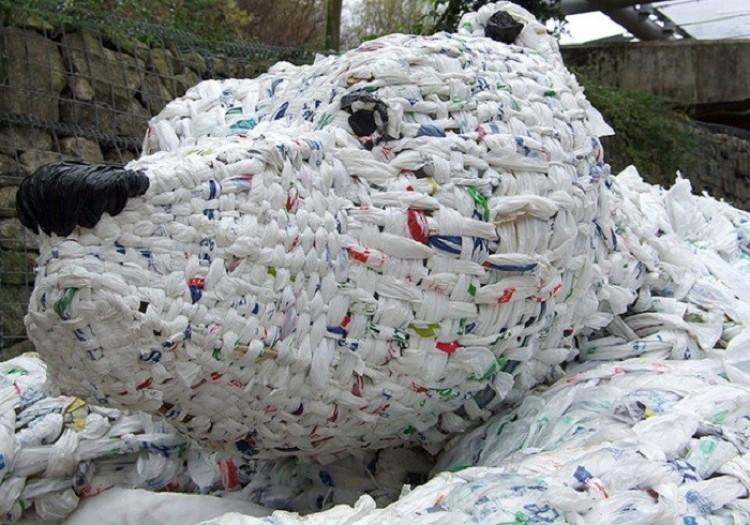 Niedźwiedź z reklamówek plastikowych.