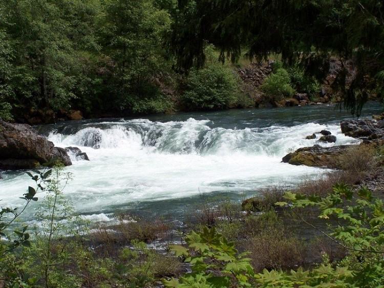 North River Ampkua (Północna rzeka Umpqua). Oregon. Stany Zjednoczone