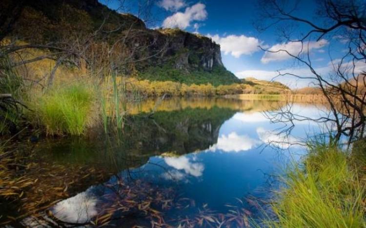 Natura Nowej Zelandii.