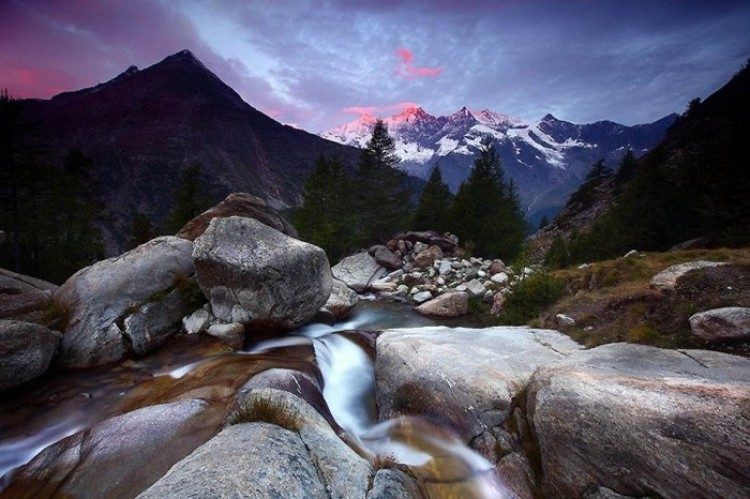 Niedaleko od hotelu Almagelleralp w Alpach Szwajcarskich.