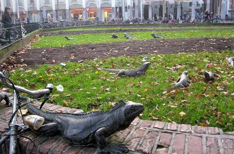 Iguana Park, Amsterdam, Holandia