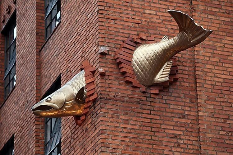 Łosoś, Portland, Oregon, Stany Zjednoczone