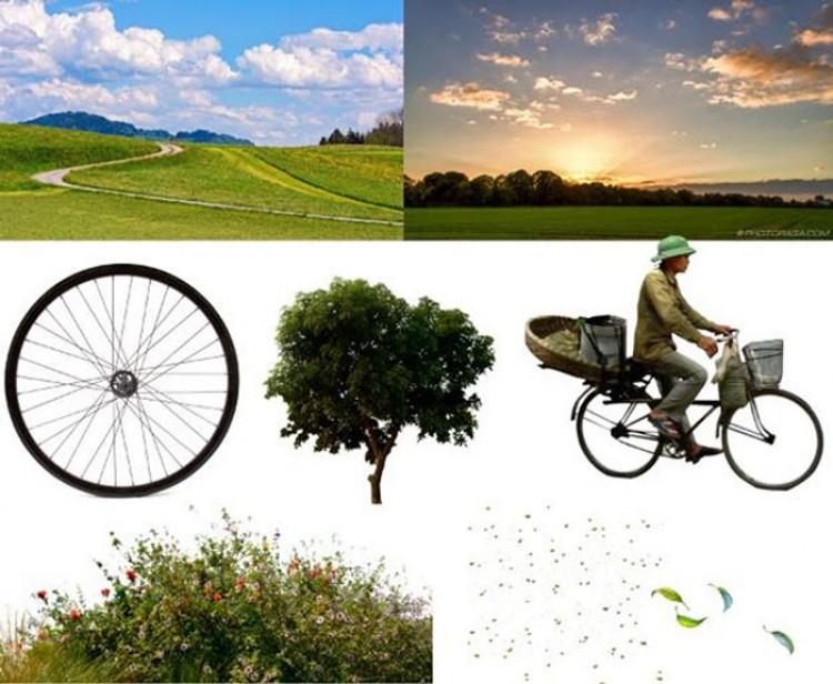 Przywieź do domu naturę: elementy obrazu.