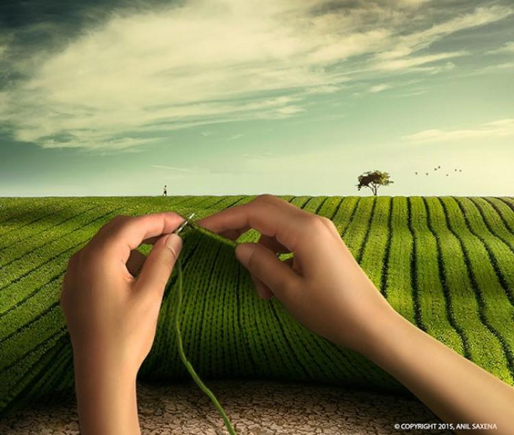 Robiąc na drutach trawę.