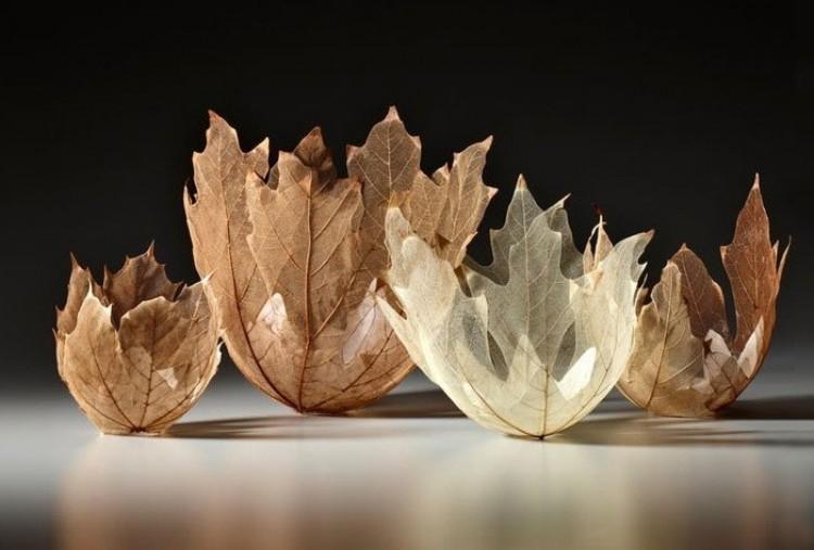 Kreatywne pomysły: lekkie misy i wazony ze szkieletów liści.