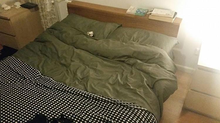łóżko jest moje!