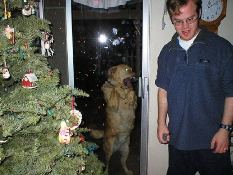 Święta beze mnie?