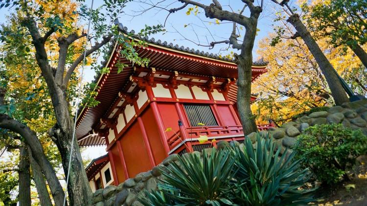 Najładniejsze zamki i świątynie Japonii.