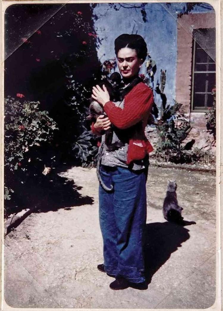 Kot Frida Kahlobył bardzo zazdrosny o małpę artyski
