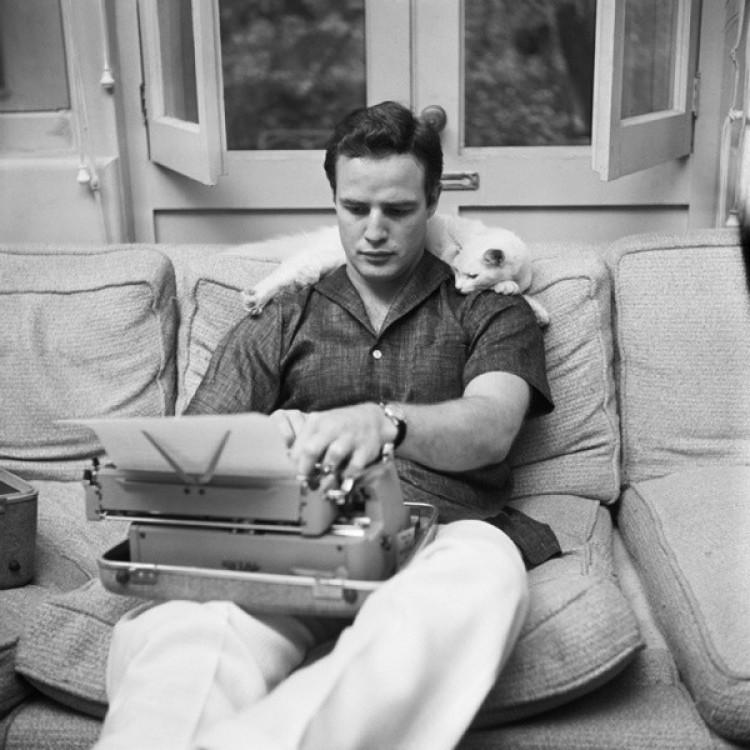 Marlon Brando i kot. Pracują