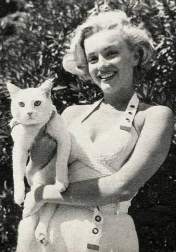 Marilyn Monroe i jej kot Mitsu