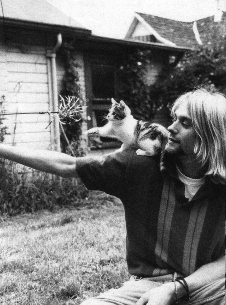 Kurt Cobain z kotkiem
