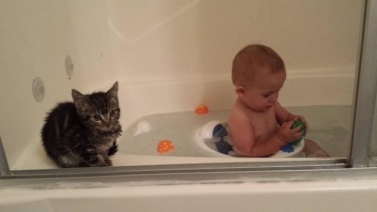 Kotek nie zostawia kumpla nawet w łazience.