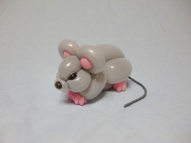 Mysz.