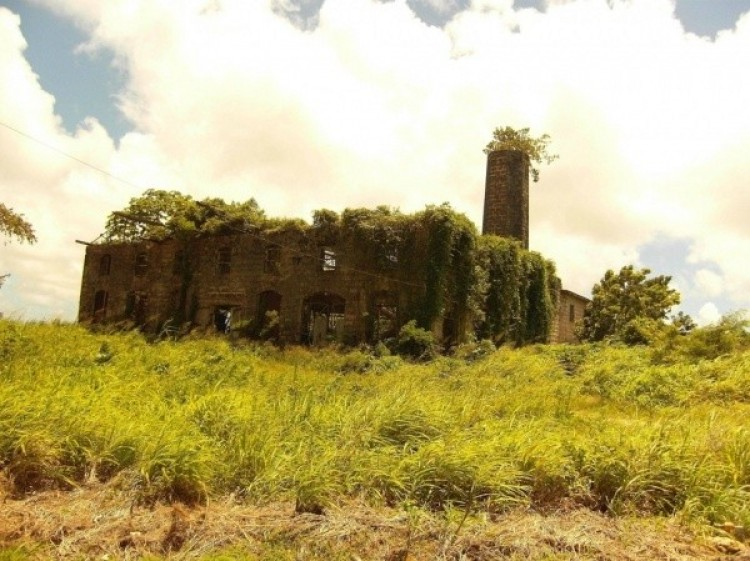 Opuszczone fabryka produkcji spirytusu na Barbados