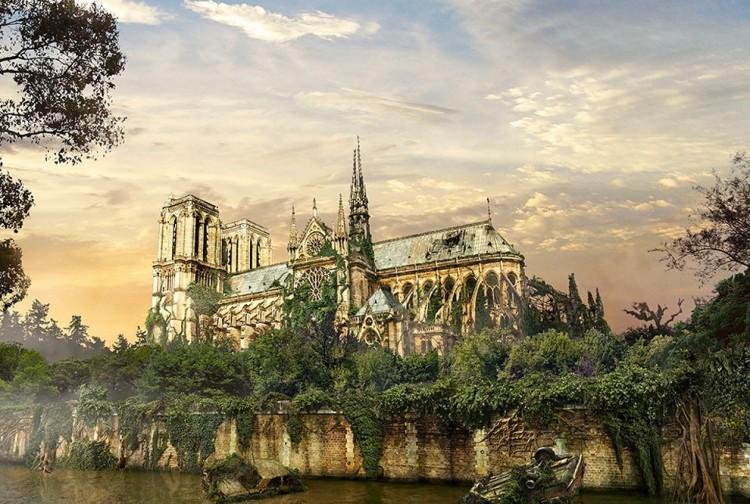 Notre Dame de Paris, Paryż, Francja