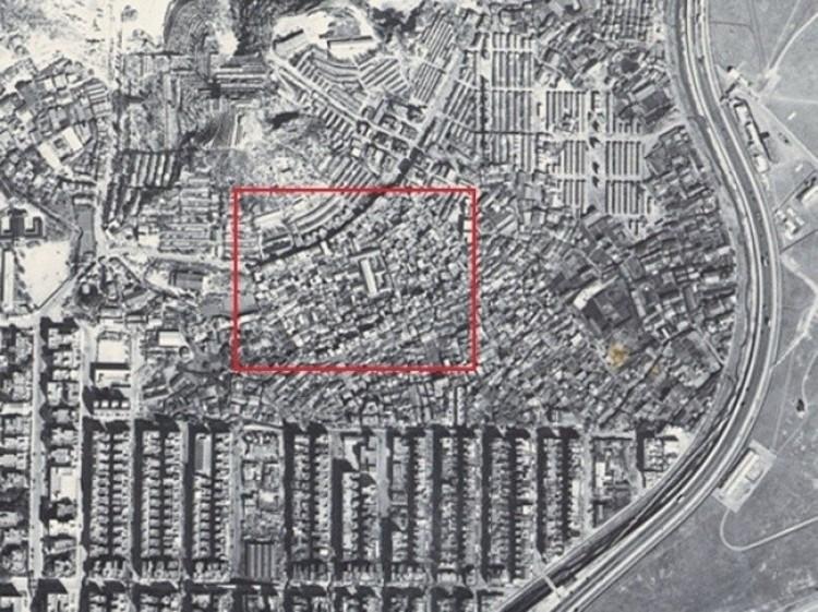 1956 rok