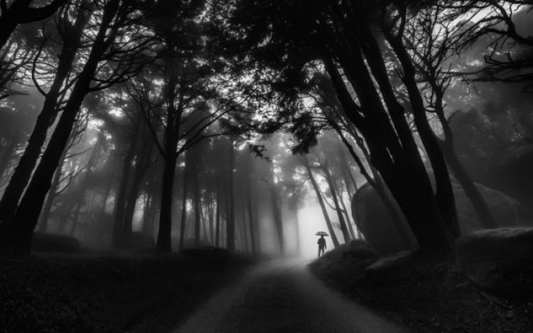 Czarno - biały świat fotografii.