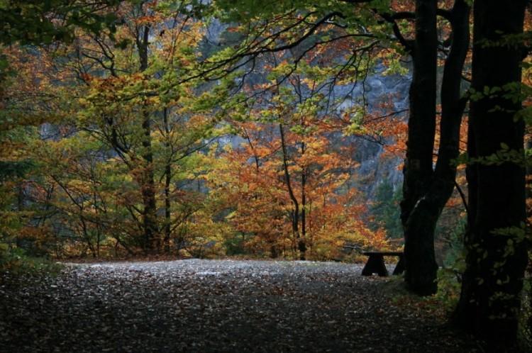 Dolina Kwacziańska, Słowacja