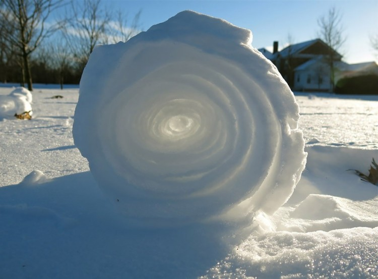 Śnieżna rolka.