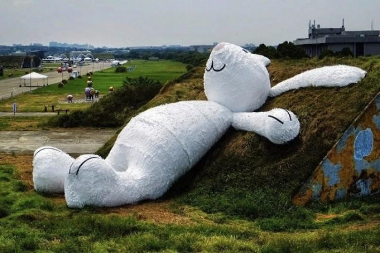 25 metrowy królik.
