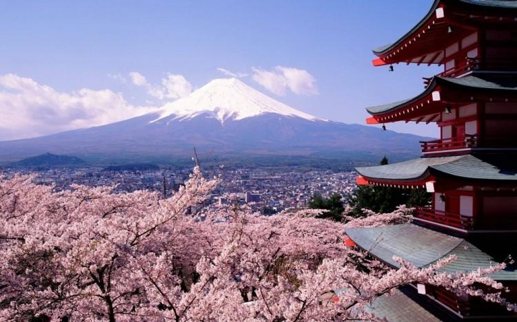 Kwiat wiśni i góra Fuji w Japonii.