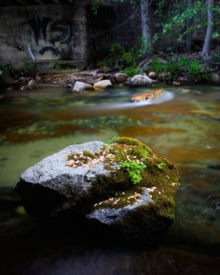 Willow Creek.