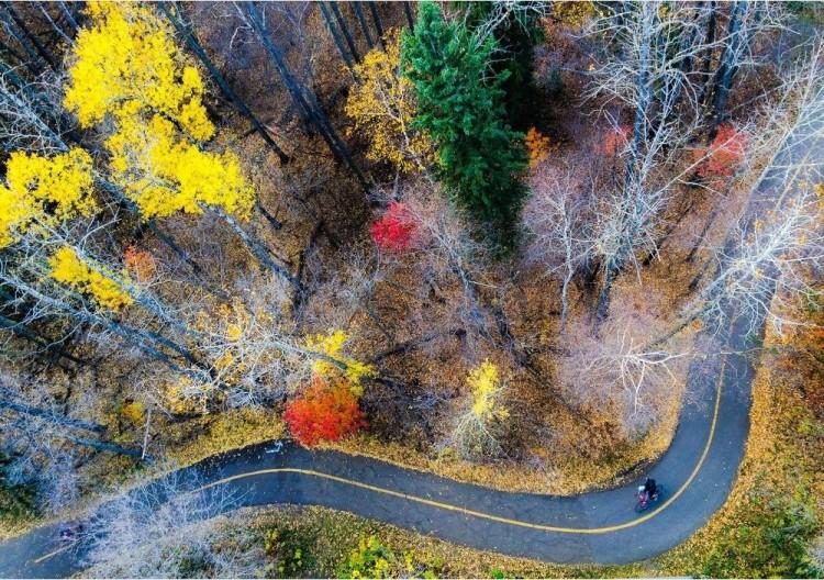 Późna jesień. Kanada
