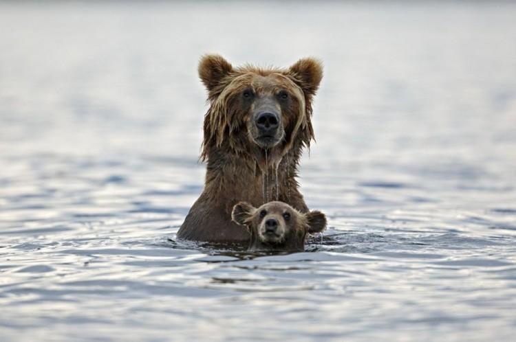 Lekcje pływania. Rosja