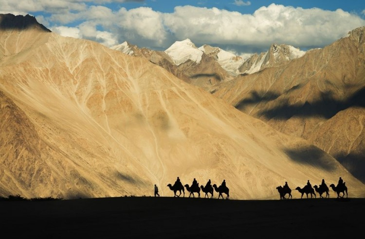 Miłość pustyni. Indie