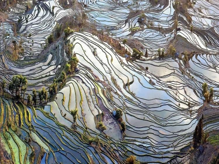 Stare pola. Chiny