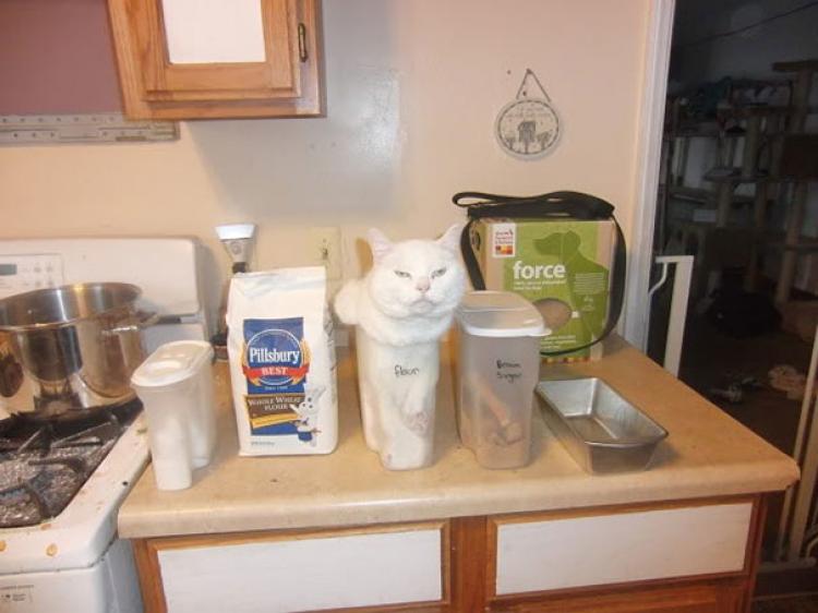 Chwileczkę, to nie mąka!